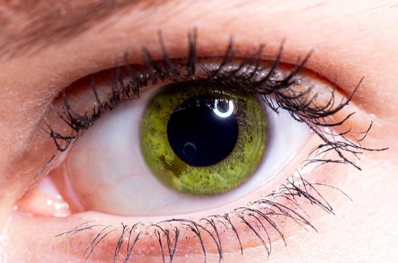 close up green eye